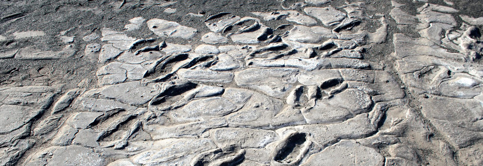 Olduvai Gorge, Laetoli Footprints