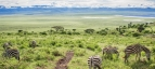 Ngorongoro Crater Descent